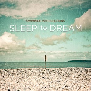 Image for 'Sleep To Dream'
