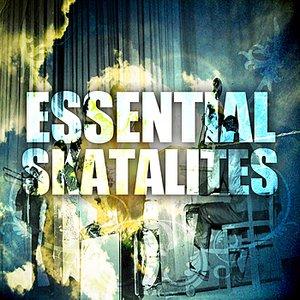 Image for 'Essential Skatalites'