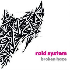 Image for 'raid system'
