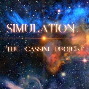 Immagine per 'Simulation'