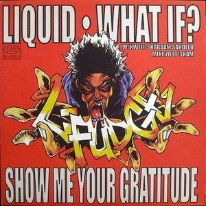 Image for 'Liquid / What If'
