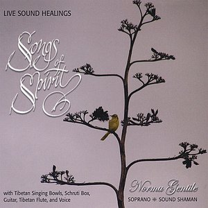 Image for 'Songs of Spirit - Live Sound Healings'