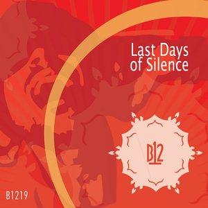 Bild för 'Last Days of Silence'
