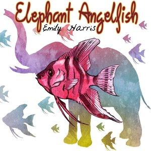 Image for 'Elephant Angelfish'