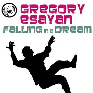 Image for 'Falling In A Dream'