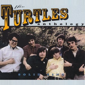 Image for 'Solid Zinc - The Turtles Anthology (Disc 2)'
