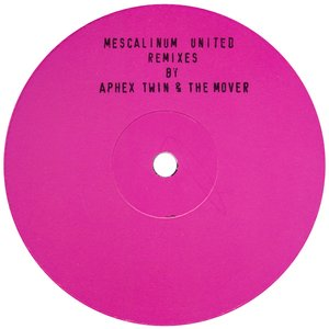 Image for 'We Have Arrived (Remixes By Aphex Twin & The Mover)'