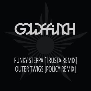 Image for 'Funky Steppa (Trusta Remix) / Outer Twigs (Policy Remix)'