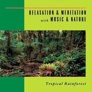 Imagem de 'Relaxation & Meditation With Music & Nature: Tropical Rainforest'
