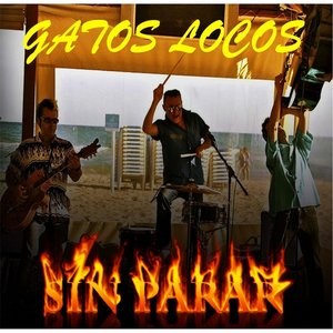 Image for 'Sin Parar'