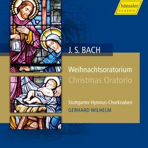 Image for 'Part III: Chorus: Herrscher des Himmels, erhore das Lallen'