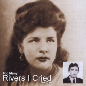 Image for 'Too Many Rivers Blues Instrumental'