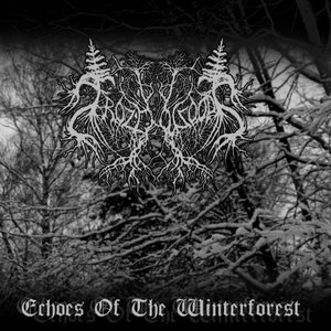 Image for 'Echoes Of The Winterforest'