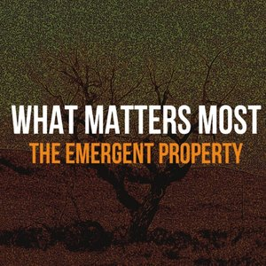 Image for 'The Emergent Property'