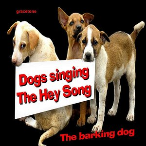 Image for 'Dogs Singing the Hey Song - SIngle'