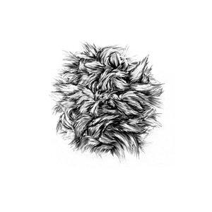 """Bild für 'Bark Of A Cedar / I Fee Nthg 7"""" - Single'"""