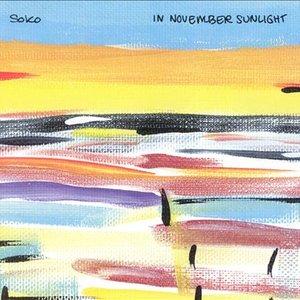 """""""In November Sunlight""""的封面"""