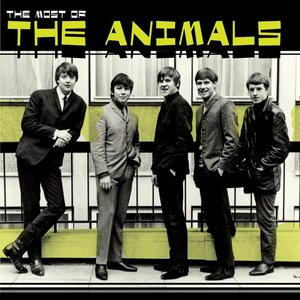 Imagem de 'Most Of The Animals'