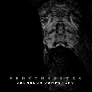 Image for 'Granular Computing 03'