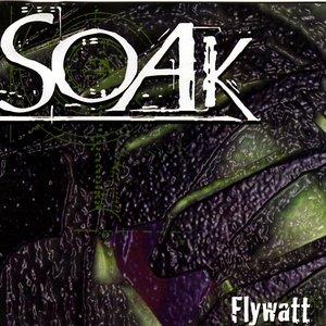 Image for 'Flywatt'