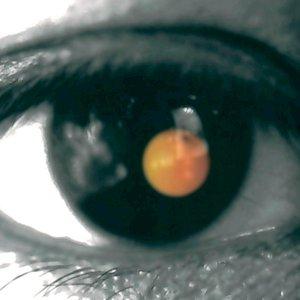 Image for 'Black Tangerine'