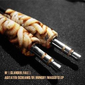 Image for 'Agitated screams of hungry maggots'