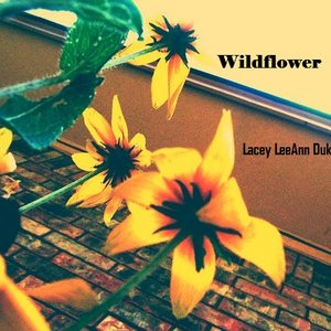 Image for 'Wildflower'