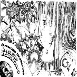 Bild för 'Diamond Incarnation'