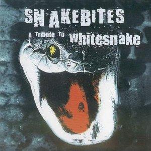 Image for 'Snakebites'