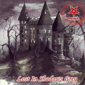Image pour 'Lost In Shadows Grey'