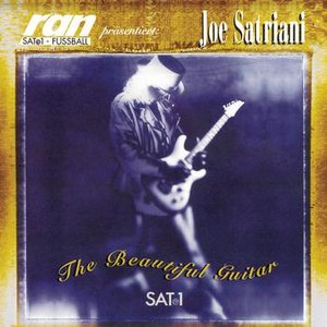 Image for 'The Beautiful Guitar'