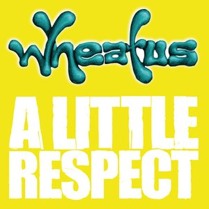 Image for 'A Little Respect'