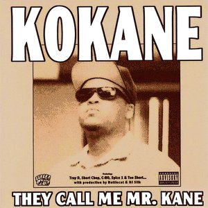 Image for 'They Call Me Mr. Kane'