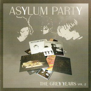Image for 'The Grey Years, Volume 2'