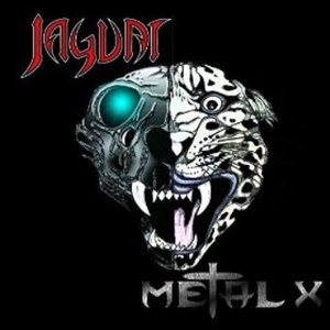 Image for 'Metal X'