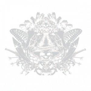Image for 'WHITE ALBUM'