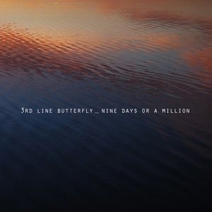 Image for 'NINE DAYS OR A MILLION'