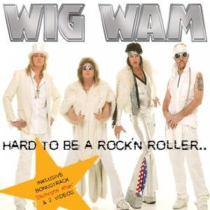 Image for 'Hard to be a Rock'N Roller'