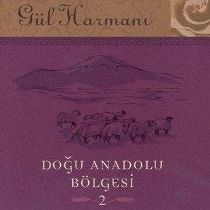 Image for '2002 Sony BMG Music EntertainmentGul Harmani Dogu Anadolu Bolgesi 2'