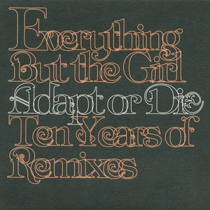Image for 'Adapt Or Die: 10 Years Of Remixes'