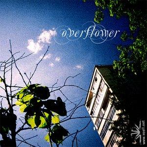 Image for 'Overflower'
