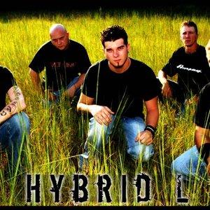 Image for 'Hybrid L'