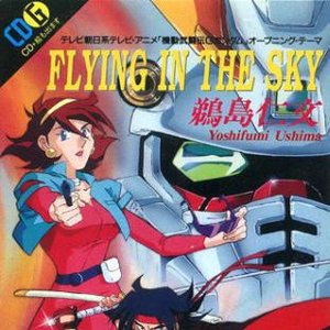 Image for 'FLYING IN THE SKY'
