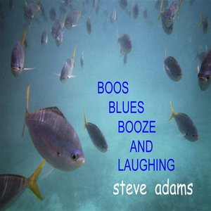 Image pour 'Boos Blues Booze And Laughing'