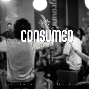 Image for 'Consumed'