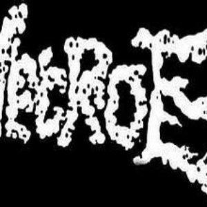 Image for 'Necro-E'