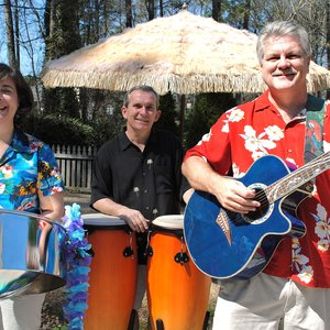 Image for 'parrot island band'