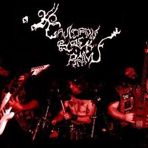 Bild für 'Cauldron Black Ram'