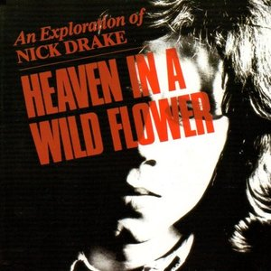 Image for 'Heaven in a Wild Flower: An Exploration of Nick Drake'