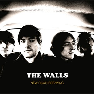 Image for 'New Dawn Breaking - second album.'